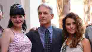 NCIS: After Mark Harmon's Exit, Is Pauley Perrette Returning? season 19 Gibbs leaving Abby comeback cast