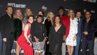 """""""Grey's Anatomy"""" cast"""