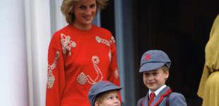 Princesa Diana, Príncipe Harry y Príncipe William