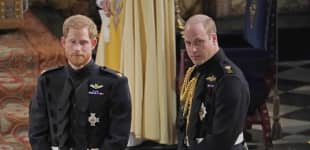 Prince William And Prince Harry Address Princess Diana Interview