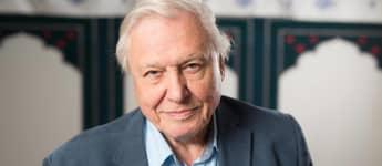 'Planet Earth': David Attenborough's Career Highlights