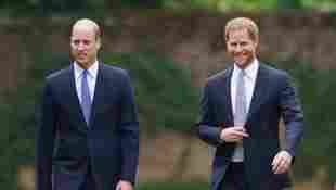 Prince William and Harry Did Most Touching Thing Before Diana Statue Unveiling reunion royal family memories 2021 news brothers