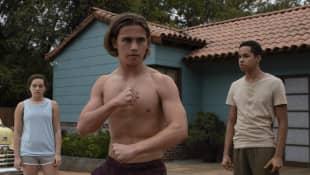 'Cobra Kai' 'Karate Kid' Quiz