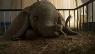 Disney's Dumbo Live-action Remake