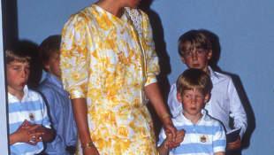 La princesa Diana, el príncipe Guillermo y el príncipe Harry