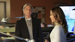 "NCIS Season 18: What Will Happen Between ""Gibbs"" And ""Sloane""?"