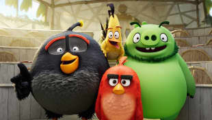 Netflix Has An 'Angry Birds' Animated Series Coming In 2021