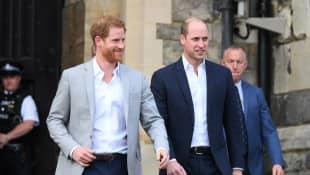 Harry y William toman distintos rumbos en cuanto a la fundación de la Princesa Diana