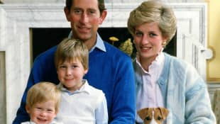 Prince Harry, Prince William, Prince Charles and Princess Diana
