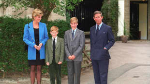 Lady Diana, Prince Harry, Prince William and Prince Charles