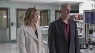 """NCIS: """"Sloane"""" and """"Gibbs"""""""