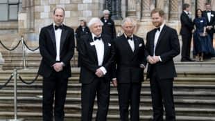 Los príncipes William, Carlos y Harry, con David Attenborough
