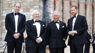 Prince William, David Attenborough, Prince Charles, Prince Harry