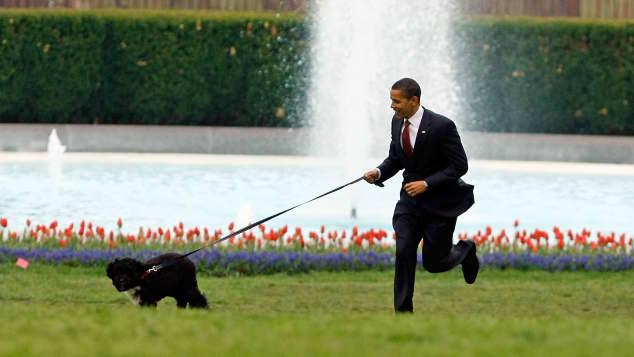 Bo and Barack Obama
