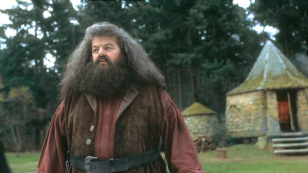 """Robbie Coltrane played """"Rubeus Hagrid"""" in the """"Harry Potter"""" films"""
