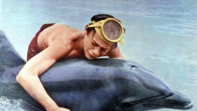 Luke Halpin and 'Flipper'