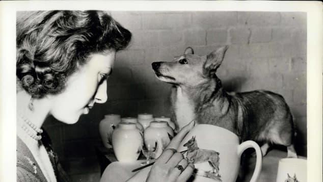 Queen Elizabeth and Buffer