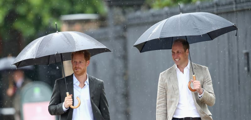 """Prince William Is Worried Harry Will """"Own"""" Princess Diana's Legacy"""