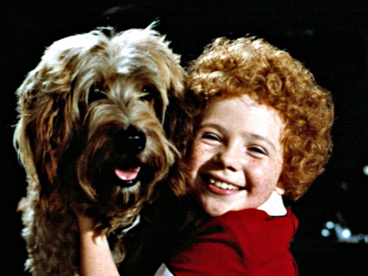 Quinn aileen Little Girl