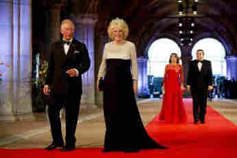Duchess Camilla's Best Evening Gown Looks