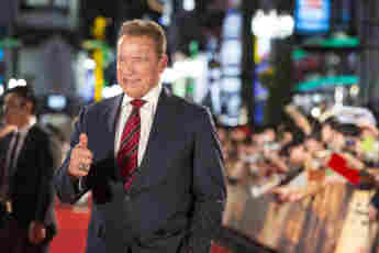 Famous Stars Who Have Ventured Into Politics
