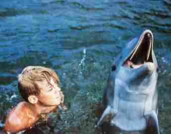 Luke Halpin y 'Flipper'