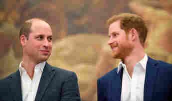 Prince William and Prince Harry 2018 Princess Diana's Anniversary
