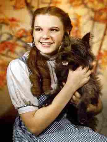 Terry es Toto en 'El mago de Oz'