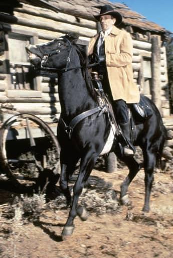 Bonanza Guest Stars: Leonard Nimoy