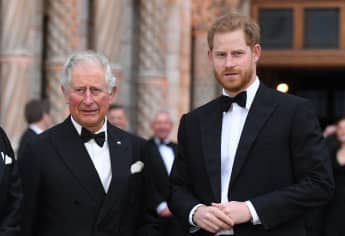 Prince Harry Won't Reunite With Prince Charles During UK Visit 2021 Princess Diana 60 birthday statue unveiling date Royal Family Prince William
