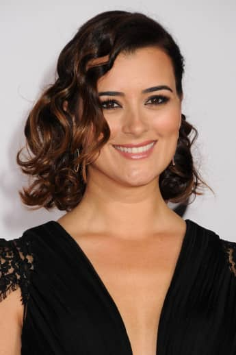 'NCIS': Is Cote de Pablo Ziva Taking On A New Career Path?