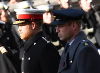 Prince Harry Isolating Next To Prince William