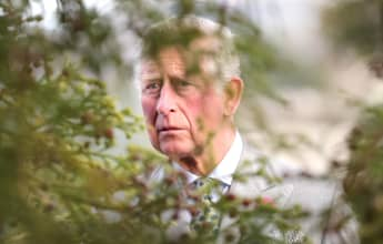 Prince Charles Adopts 3 Baby Hedgehogs!