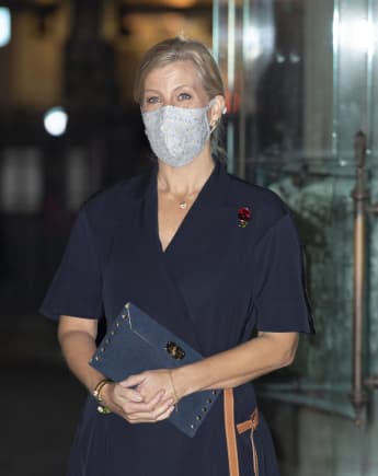 Sophie Wessex Attends Public Engagement After Leaving Quarantine