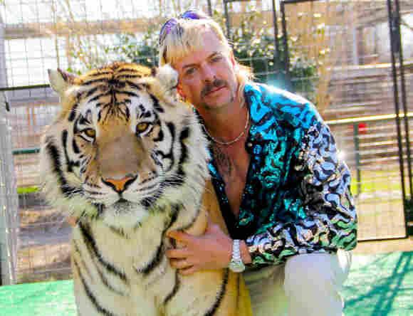 'Rey Tigre'