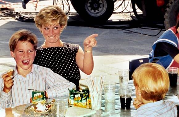 Prince William Princess Diana Prince Harry