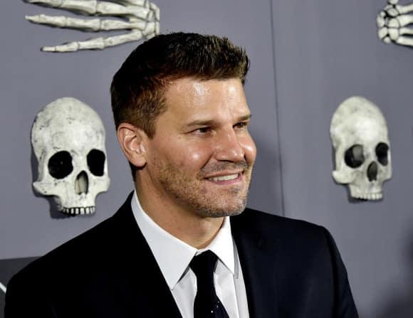 """David Boreanaz alias """"Seeley Booth"""" in """"Bones"""""""