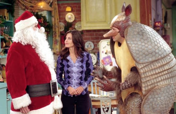 "'Friends': ""The One With the Holiday Armadillo"" episode."
